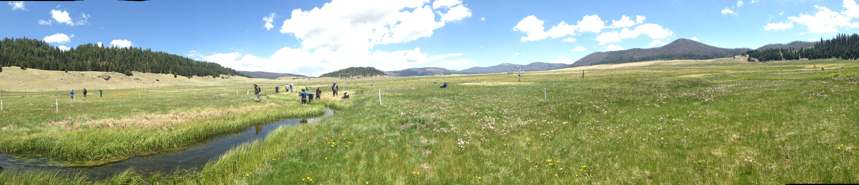 Valles Caldera UNM Water Resources Program field camp